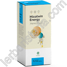 Micotwin Energy