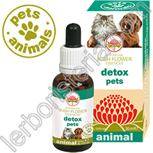 Australian Bush Flower Essences Animal Detox Pets