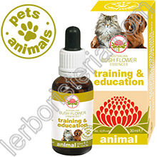 Australian Bush Flower Essences Animal Training & Education